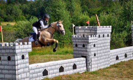 Arbottna Horse Show i augusti