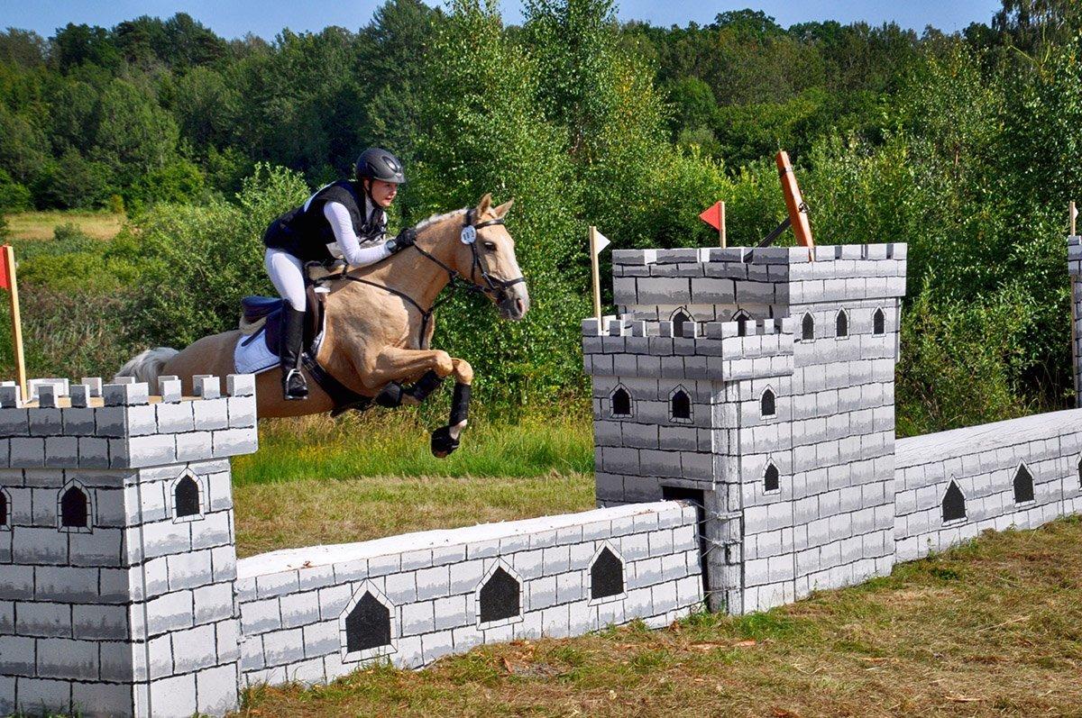 Arbottna Horse Show. Foto: Bengt Grönkvist