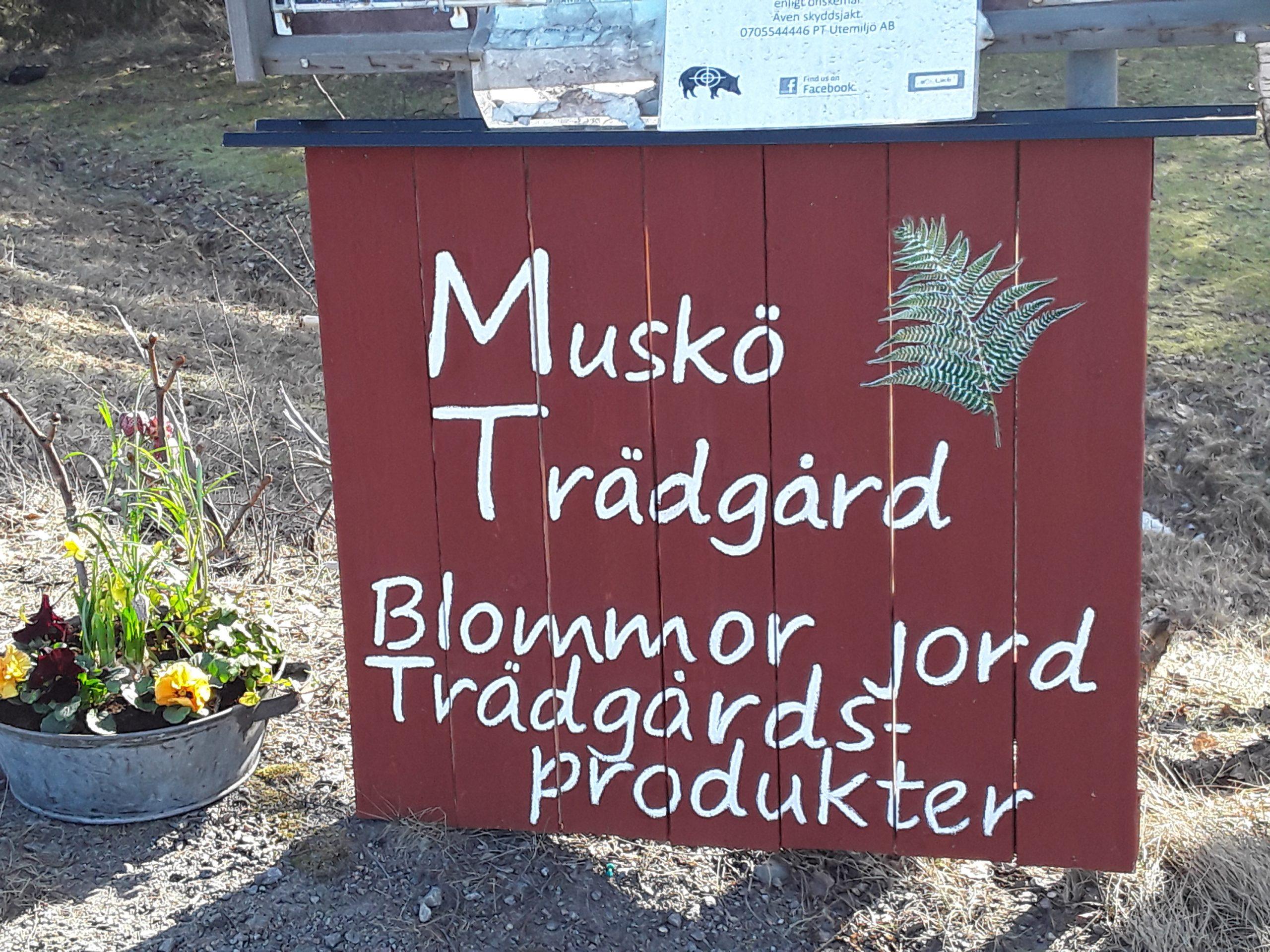 Muskö Sjökrog, Mickrums brygga, Muskö